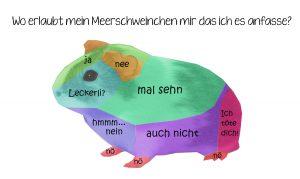 Deutsch- Schweinisch, Schweinisch- deutsch I